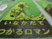 日本稻田創意創作