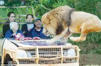 最恐怖的動物園