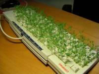 鍵盤另一種用途?!