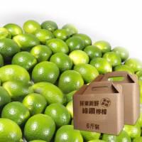 屏東新鮮綠鑽檸檬12斤