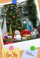 聖誕系列相框 溫暖你心《美照相框》節日版 繽紛出動!