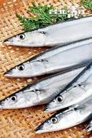 極品鮮嫩秋刀魚 300g 2尾