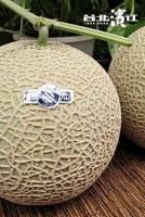 免運【人氣限定星期一 買1送1】日本種哈密瓜 3kg 箱,2顆