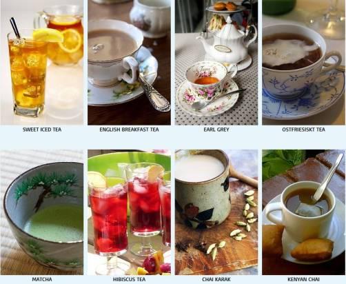 愛茶者必收!蒐羅世界各地茶飲作法的《鍊茶術》海報