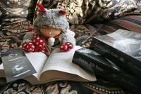 你知道電子書市場中最有潛力的竟然是令人害羞的成人小說嗎?
