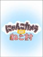 萌系貓咪軍にゃんこカメラ~可愛貓咪相機 App編輯用這招